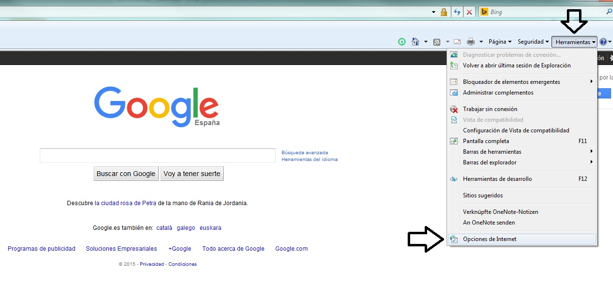 google_navegador_principal_explorer